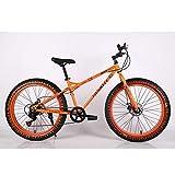 VANYA Bicicleta de montaña 26 Pulgadas 30 Velocidad Off-Road Bici de la Playa de Motos de Nieve 4.0 Gran neumático...